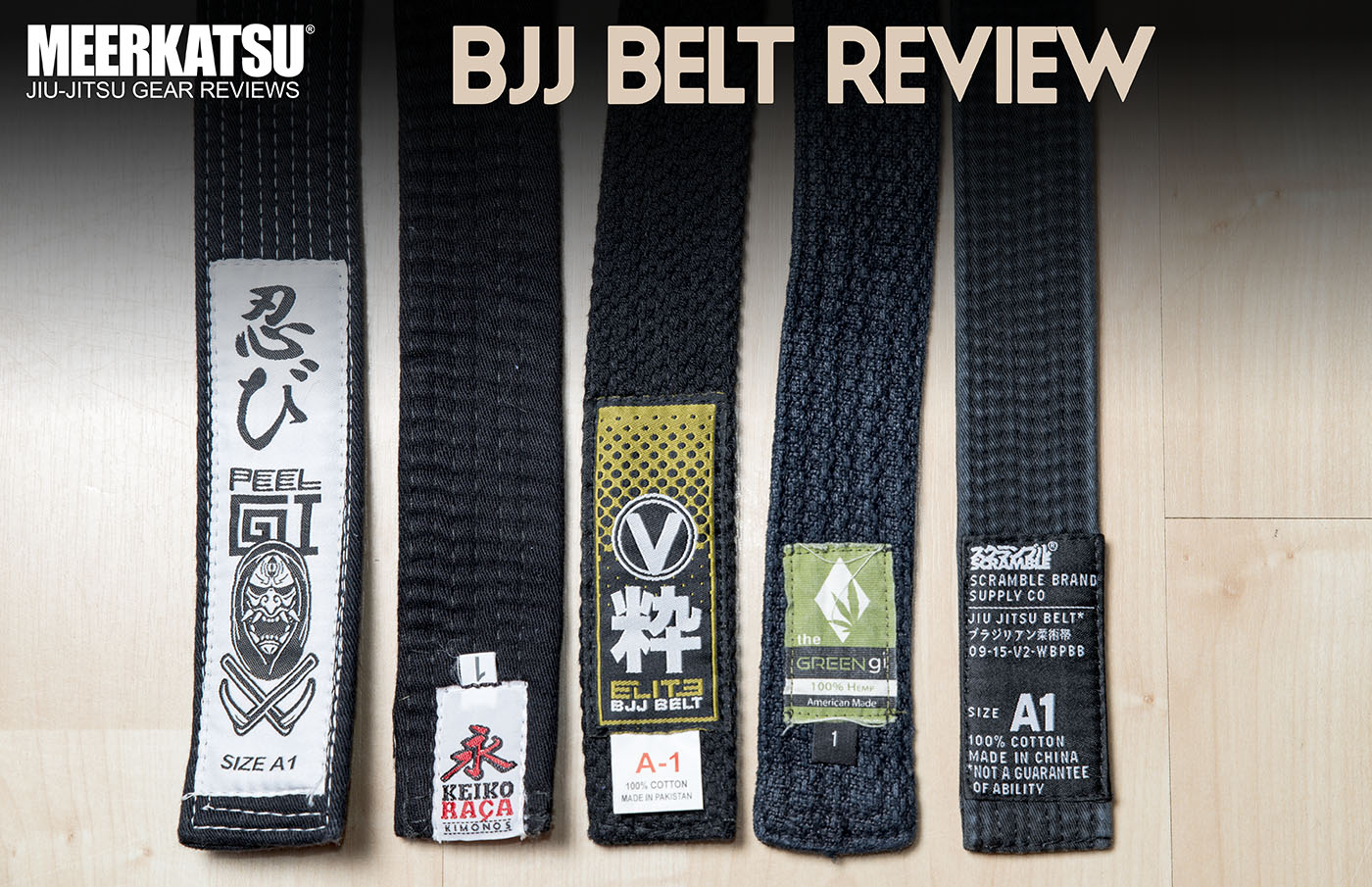 best bjj instructional videos